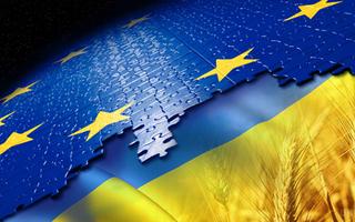 Оценка перспектив заключения таможенного союза с ЕС